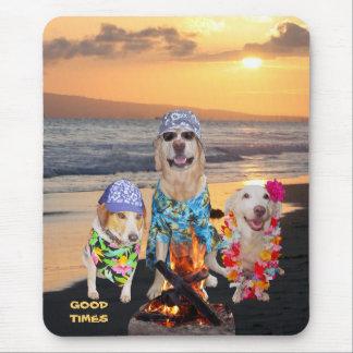 Cães na praia mouse pad
