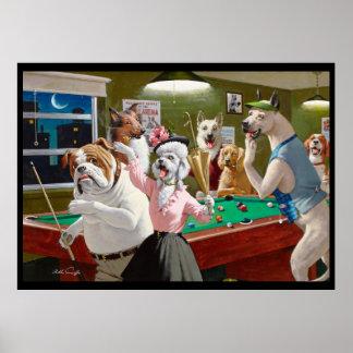 Cães que jogam a piscina - riscada no alvorecer poster
