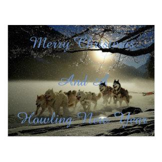 Cães Running no cartão da neve
