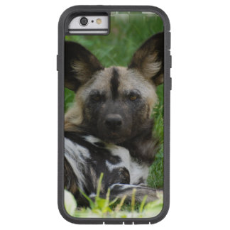 Cães selvagens africanos capa iPhone 6 tough xtreme