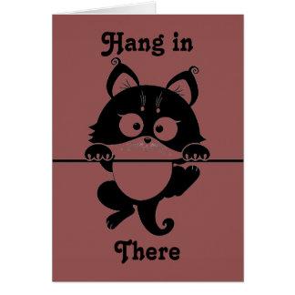 Cair lá no cartão do gato