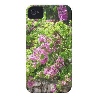 caixa da flor 4/4s do iPhone Capinhas iPhone 4