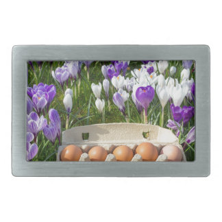 Caixa de ovo com os ovos da galinha nos açafrões
