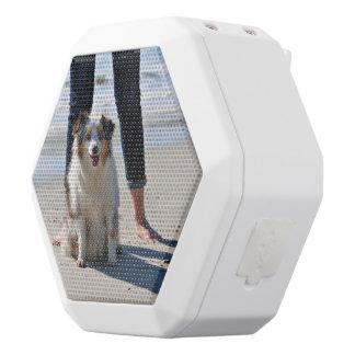 Caixa De Som Branca Com Bluetooth Bennett - mini australiano - Rosie - praia de