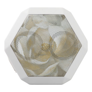 Caixa De Som Branca Com Bluetooth Magnólia majestosa
