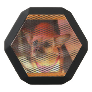 Caixa De Som Preta Com Bluetooth Retrato do auto-falante do cão da chihuahua do cão