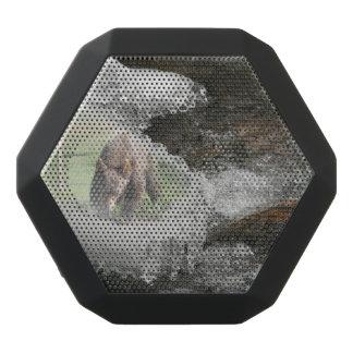 Caixa De Som Preta Com Bluetooth Urso no rio gelado
