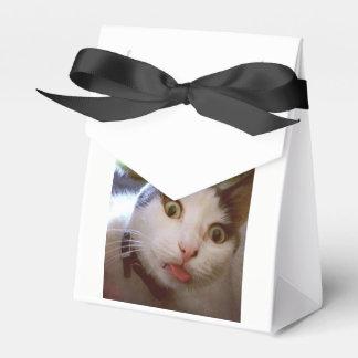Caixa do gatinho Yum Yum