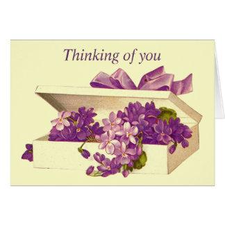 Caixa do vintage do cartão das violetas