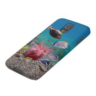 Caixa tropical da galáxia S5 de Samsung dos peixes Capas Par Galaxy S5