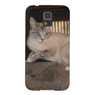 Caixas animais adoráveis da galáxia de Samsung Capinhas Galaxy S5