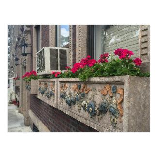 Caixas de janela, avenida do West End, cartão da