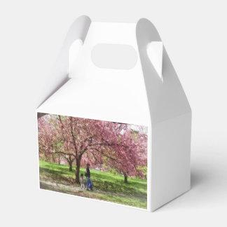 Caixinha Apreciando as árvores de cereja