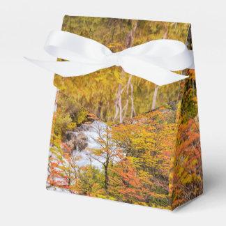 Caixinha Cena colorida da paisagem da floresta, Patagonia