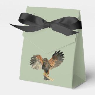 Caixinha O Flapping do falcão voa a pintura da aguarela