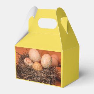 Caixinha Ovos da páscoa rústicos no ninho