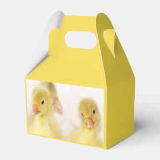 Caixinha Patinhos amarelos macios