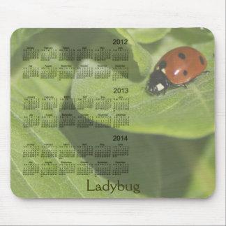 Calendário 2012-2014 do joaninha Mousepad