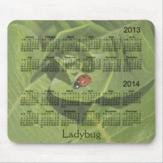 Calendário 2013-2014 do joaninha Mousepad