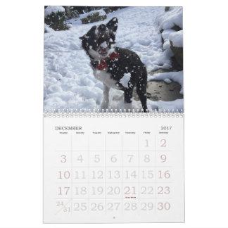 Calendário 2017 de border collie