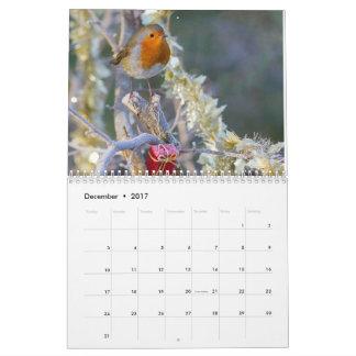 Calendário 2017 do pisco de peito vermelho