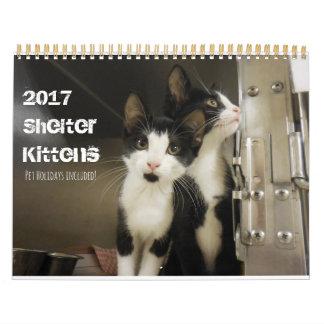 Calendário 2017 gatinhos do abrigo