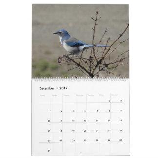 Calendário 2017 pássaros de America do Norte