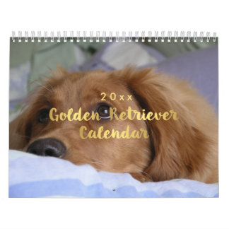 Calendário 2018 do golden retriever da foto