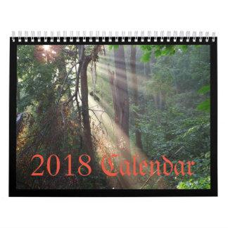 Calendário 2018 do pássaro 1