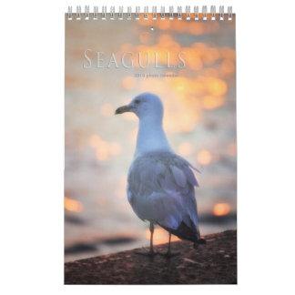 Calendário A gaivota fotografa pássaros de Toronto na praia