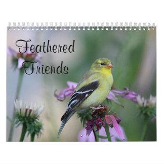 Calendário Amigos emplumados - pássaros selvagens