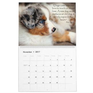 Calendário australiano dos filhotes de cachorro do