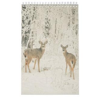 Calendário Branco bonito cervos atados