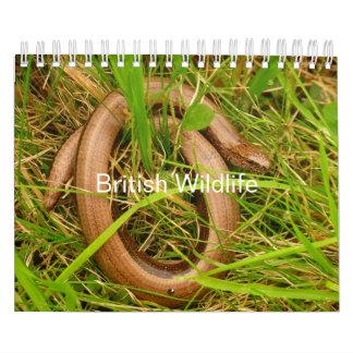 Calendário britânico dos animais selvagens