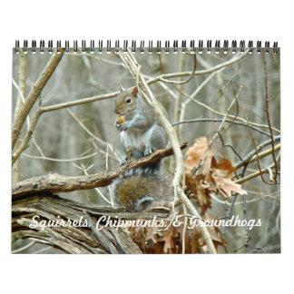 Calendário - Chipmunks Groundhogs dos esquilos