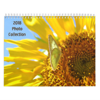 Calendário Coleção 2018 da foto