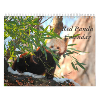 Calendário da panda vermelha