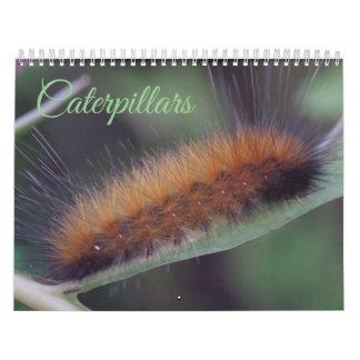 Calendário das lagartas