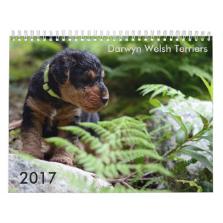 Calendário de galês Terrier 2017 por Darwyn