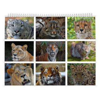 Calendário de parede com as fotos de gatos