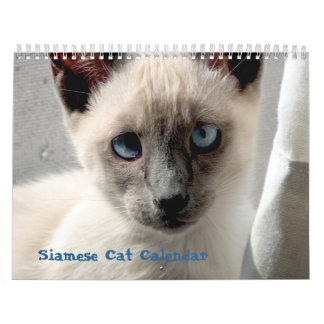 Calendário do gato Siamese