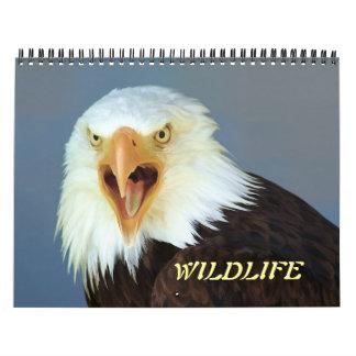 Calendário dos animais selvagens