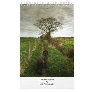 Calendário dos cães