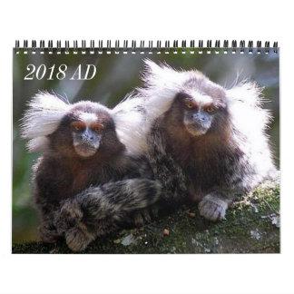 Calendário Doze macacos