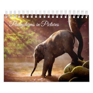 Calendário Fotografias bonitas do elefante