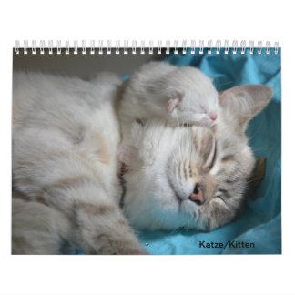 Calendário Gato, Kitten/