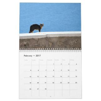 Calendário Gatos do gatinho da piscina