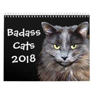 Calendário Gatos engraçados com Catitude