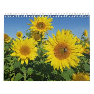 Calendário girassol na flor colorida do verão do céu azul