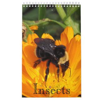 Calendário Calendário - insetos (sgl. página.)